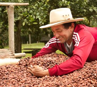 food-thoughts-cacao-nibs-casa-luker